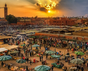 casablanca to marrakech day tour